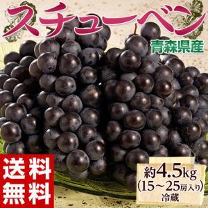 葡萄 ぶどう ブドウ青森県産 黒ぶどう スチューベン 約4.5kg 15〜24房 送料無料 冷蔵 tsukijiichiba