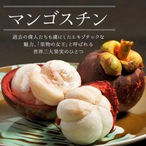 タイ産生マンゴスチン 4玉×3パック 計12玉 ※冷蔵 frt ☆