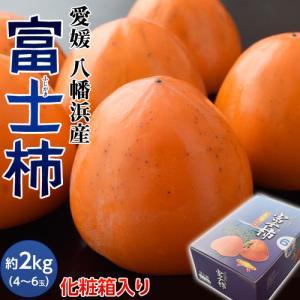 柿 かき カキ ギフト 愛媛県産 富士柿 化粧箱入り 4〜6玉 約2kg 送料無料