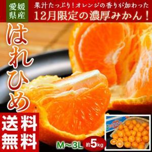 オレンジ みかん 愛媛県産 はれひめ 約5kg (M〜3L) 送料無料|tsukijiichiba