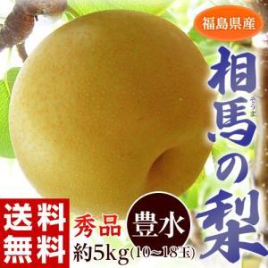 梨 なし ナシ 福島県産 相馬の梨 豊水 秀品 10〜18玉 約5kg ※常温 送料無料 tsukijiichiba