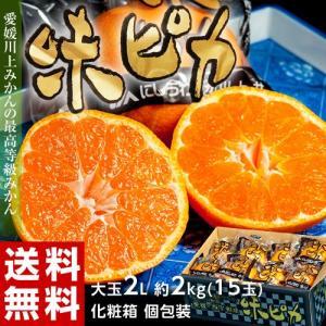 愛媛県産 みかん 味ピカ 化粧箱 個別包装 2Lサイズ 15玉 約2kg 送料無料|tsukijiichiba