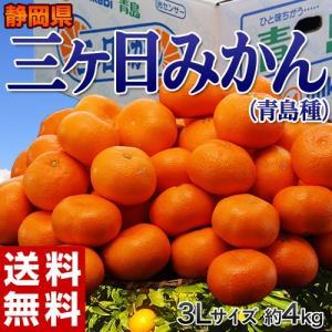 《送料無料》静岡産 三ヶ日みかん(青島種)3〜4L 約4kg...