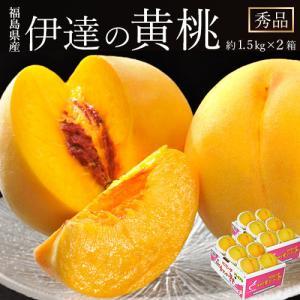 黄桃は一般的な赤い果皮の桃に比べて、全国的にも生産量が少ない桃です。その中でも福島県産は全国の市...