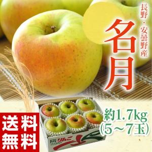 りんご リンゴ 林檎 長野県・安曇野産「名月りんご」1箱(5〜7個入り 約1.7kg) 送料無料|tsukijiichiba