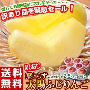 りんご 青森県産 訳あり「葉とらず太陽ふじ」約2.5kg(8...