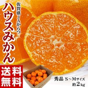 佐賀県産 JAからつのハウスみかん Mサイズ 約1.2kg(11〜15玉)frt ○...