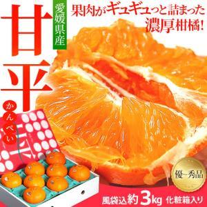 甘平 柑橘 愛媛産 大玉限定『甘平』 約2.5キロ 4L 8玉 化粧箱入り 送料無料|tsukijiichiba