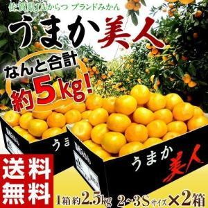 高糖度みかん みかん 佐賀県産 JAからつ うまか美人 約2.5kg×2箱 2S〜3Sサイズ 送料無料|tsukijiichiba