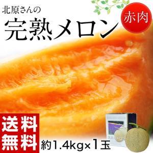 メロン めろん 北海道産 北原さんの完熟メロン 化粧箱入 1玉 約1.4kg 送料無料|tsukijiichiba