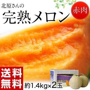 メロン めろん 北海道産 北原さんの完熟メロン 化粧箱入 2玉 (約1.4kg×2) 送料無料|tsukijiichiba