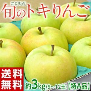 旬の『トキりんご』 青森県産 JA津軽みらい 特A 約3kg (9~12玉) ※常温 送料無料|tsukijiichiba