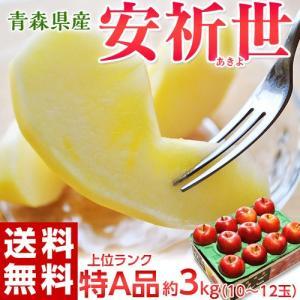 りんご 送料無料 青森県産 安祈世(あきよ)10〜12玉 約3kg【特A】|tsukijiichiba