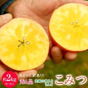 林檎 リンゴ 青森県産 ちょっと訳あり こみつりんご 6〜12玉 約2kg 秀A品 ムラ・小さな傷あり 常温 4箱まで同一配送先に送料1口で配送可能|tsukijiichiba