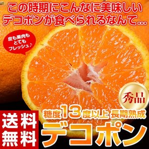 熊本から6〜7月向けの 特別熟成デコポンが登場です!!  皮もパリッと!ハリがあって果肉もジューシー...