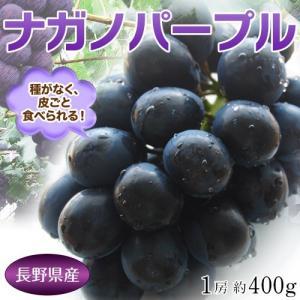 長野県産 ハウス栽培品『ナガノパープル』1房 約400g ※冷蔵|tsukijiichiba