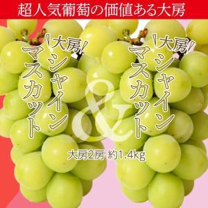 葡萄 ぶどう 山梨県産 特大シャインマスカット 2房 合計約1.4kg ※常温 送料無料|tsukijiichiba