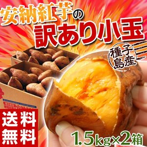 《送料無料》【安納芋】種子島産 「安納紅芋」 小玉 約1.5キロ×2箱 合計3キロ  ○|tsukijiichiba