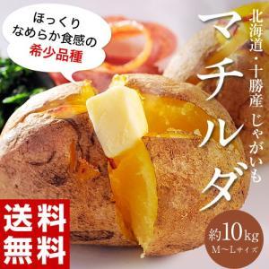 ≪送料無料≫北海道・芽室産 『マチルダ(じゃがいも)』 M〜Lサイズ 約10kg ○|tsukijiichiba