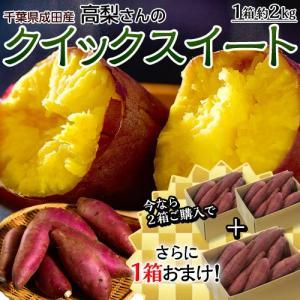 【2箱購入で1箱分増量】千葉県産 高梨さんのさつまいも クイックスイート 約2kg S〜Lサイズ 送料無料 常温|tsukijiichiba