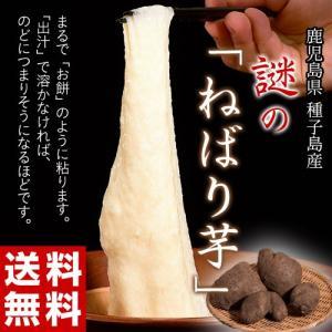 《送料無料》種子島産 「謎のねばり芋」 約2kg ○|tsukijiichiba