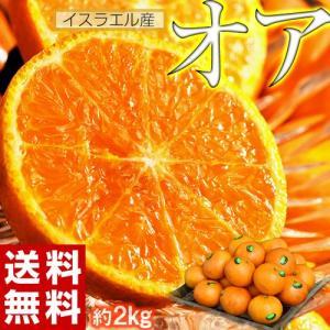 神秘の柑橘 オアオレンジ イスラエル産 約2kg(14〜20玉前後) 送料無料 frt ☆