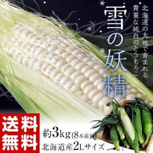 送料無料 北海道産 『雪の妖精 とうもろこし』 約3kg 8本前後 ※冷蔵|tsukijiichiba