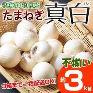 北海道北見産 玉ねぎ 『真白(ましろ)』 簡易包装 不揃い(S〜2L) 約3kg ※冷蔵 ☆|tsukijiichiba