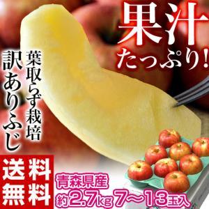 りんご サンふじ 青森県産 訳あり葉とらず ふじ 約3kg (目安として7〜13玉) 岩木山りんご生産出荷組合 送料無料|tsukijiichiba