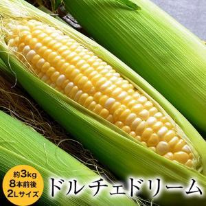送料無料 『ドルチェドリーム とうもろこし』 北海道産 約3kg 8本前後 ※冷蔵|tsukijiichiba