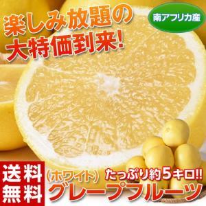 《送料無料》南アフリカ産 グレープフルーツ(ホワイト) 約5kg(目安として10〜20玉) ※常温 frt ○|tsukijiichiba