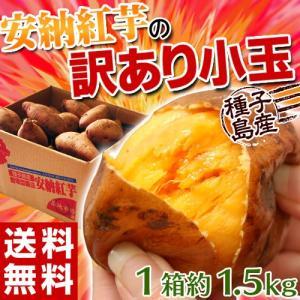《送料無料》種子島産 「安納紅芋」 小玉 約1.5キロ※3箱買ったら1箱増量! 訳あり小玉 安納芋 ○|tsukijiichiba