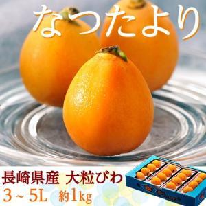 なつたより びわ 長崎県産 秀品 大粒3〜5L 12〜16玉 約1kg ※冷蔵 frt