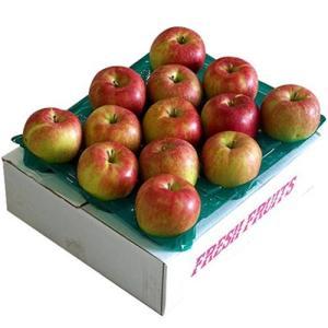 送料無料 りんご リンゴ 林檎 長野県 飯綱産 「シナノスイート」 13〜14玉 約5kg ※ちょっと訳あり tsukijiichiba