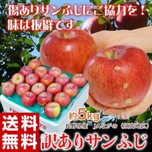 ふじ りんご 送料無料 長野県産 JAながの 訳ありサンふじ 約5kg(10〜25玉)|tsukijiichiba