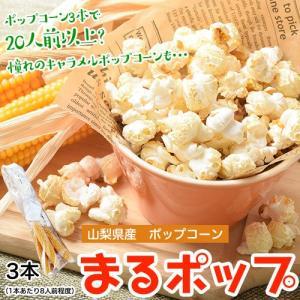 送料無料 山梨県産ポップコーン まるポップ 3本(目安として1本あたり可食部100g程度)|tsukijiichiba