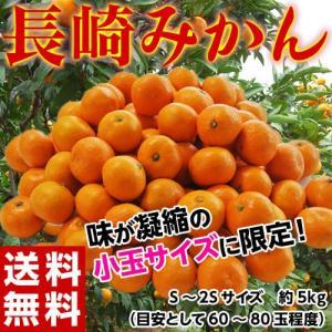 みかん 送料無料 長崎みかん 小玉  S〜2Sサイズ 約5kg|tsukijiichiba