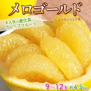 柑橘 グレープフルーツ アメリカ・カリフォルニア産 大玉 メロゴールド 6〜9玉 約4.5kg 送料無料 tsukijiichiba