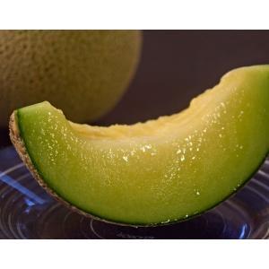 メロン MELON 茨城県産 芝田誠一さんのキスミーメロン 産地箱 約5kg(3〜4玉) 常温 送料無料|tsukijiichiba