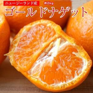 柑橘 マンダリン オレンジ ニュージーランド産 ゴールドナゲット 約2kg(目安として18〜22玉) 送料無料|tsukijiichiba