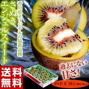 キウイ キウイフルーツ 香川産 さぬきエンジェルスイート 2S 28玉 約1.6kg ※簡易梱包 送料無料