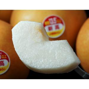 『一糖賞(梨)』糖度13.5度以上 新潟県しろね地区 品種:新高 約2.5kg(3〜6玉) 簡易箱 ※常温 送料無料 tsukijiichiba