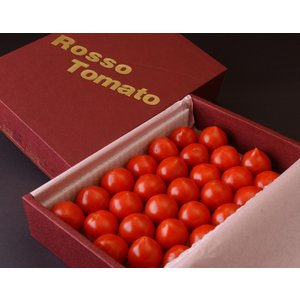 『ロッソトマト』 愛知産 S〜Lサイズ 1.2kg  ○ tsukijiichiba