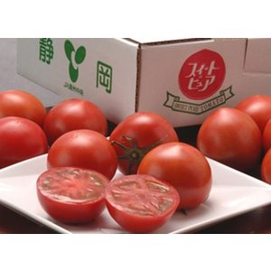 『スイートピュア トマト』 静岡県産 約800g ○ tsukijiichiba