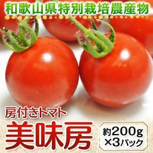 トマト 野菜 和歌山県産 特別栽培農産物 房付き「美味房(おいしんぼう)トマト」 1パック 約200g×3パック|tsukijiichiba