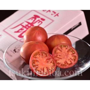 フルーツトマト『麗(れい)』 愛知・豊橋産 約900g(7〜23玉) ☆ tsukijiichiba