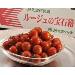 トマト『ルージュの宝石箱』群馬産 約900g フルーツトマト ミニトマト とまと 野菜 ギフト プレゼント 贈り物 贈答|tsukijiichiba