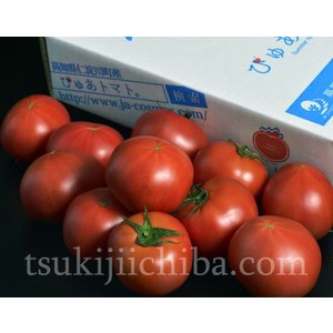 『ぴゅあトマト』 高知産 3S〜2L 約900g(7〜23玉) ○ tsukijiichiba