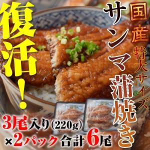 うなぎ屋が作る本格蒲焼「さんまの蒲焼き」 3尾(220g)×2P 合計6尾 ※冷凍 sea ◯ tsukijiichiba