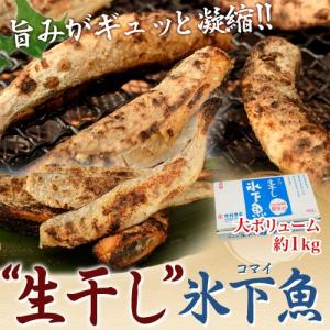 北海道根室産 「生干しコマイ」1kg ※冷凍 sea ☆ tsukijiichiba